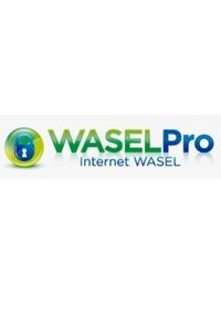 Wasel Pro VPN Test