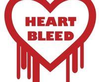 Heartbleed CyberGhost VPN