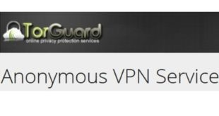 Torguard VPN Server Netzwerk